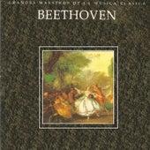 Grandes Maestros de la Musica Clasica - Beethoven by Various Artists