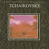 Play & Download Grandes Maestros de la Musica Clasica - Tchaikovsky by Various Artists | Napster