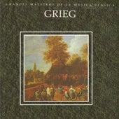 Grandes Maestros de la Musica Clasica - Grieg by Various Artists