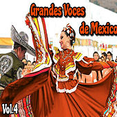 Play & Download Grandes Voces de México, Vol. 4 by Various Artists | Napster
