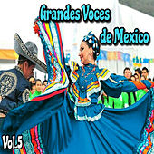 Grandes Voces de México, Vol. 5 by Various Artists