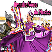 Grandes Voces de México, Vol. 3 by Various Artists
