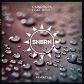 Play & Download Raindrops by SNBRN | Napster
