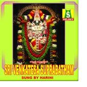 Sri Venkatesa Suprabatham by Harini