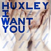 I Want You (Deetron, Shenoda & Komon remixes) by Huxley