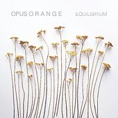 Equilibrium by Opus Orange