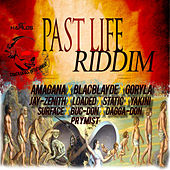 Play & Download Past Life Riddim by Various Artists | Napster