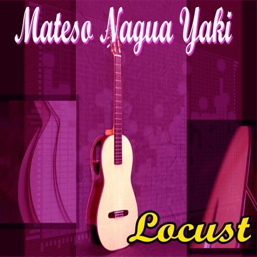 Play & Download Mateso Nagua Yaki by Locust   Napster