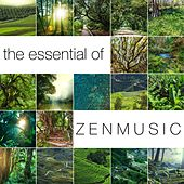 Play & Download The Essential of Zen Music: Songs for Stress Release with Ocean Waves and Sound of Water by Sounds of Nature Relaxation | Napster