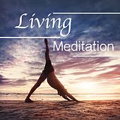 Play & Download Living Meditation: Total Relaxation Music for the Ultimate Wellbeing by Sounds of Nature Relaxation | Napster