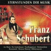 Sternstunden der Musik: Franz Schubert von Various Artists