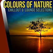 Play & Download Colours of Nature Chillout & Lounge Selections - EP by Various Artists | Napster