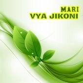 Play & Download Vya Jikoni by Mari   Napster