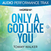 Only a God Like You by Tommy Walker
