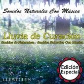 Lluvia de Curación: Sonidos Naturales Con Música: Edición Especial by Llewellyn