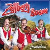 Heustadlzeit von Zellberg Buam