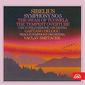 Play & Download Sibelius:  Symphony No. 5, The Swan of Tuonela, The Tempest Overture by Various Artists | Napster