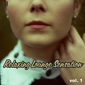Relaxing Lounge Sensation, Vol. 1 by Various Artists