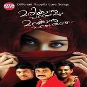 Marikkan Paranjalum Marakkan Parayaruthe by Various Artists