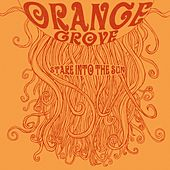Play & Download Stare Into The Sun by Orange Grove | Napster