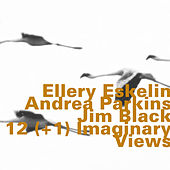 Play & Download 12(+1) Imaginary Views by Ellery Eskelin | Napster