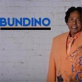 Bundino by Bunny Sigler