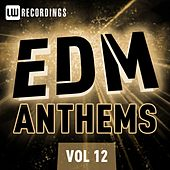 Play & Download EDM Anthems, Vol. 12 - EP by Various Artists | Napster