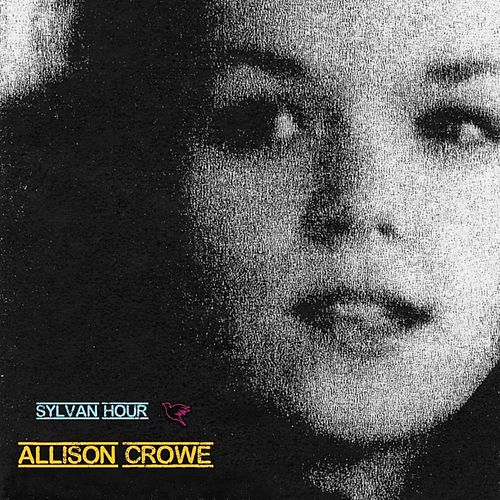 Play & Download Sylvan Hour by Allison Crowe | Napster
