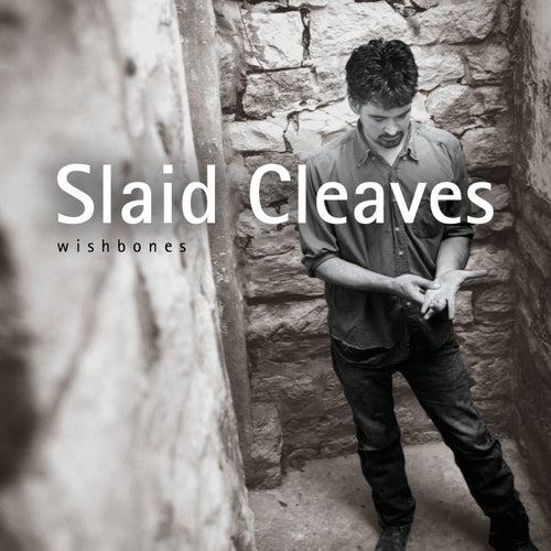 Wishbones by Slaid Cleaves