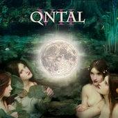 Qntal VII by Qntal