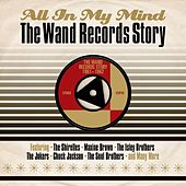 All in My Mind: The Wand Records Story 1961-1962 von Various Artists