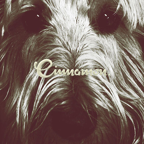 Jambo Sessions by Cinnamon