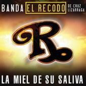 Play & Download La Miel De Tu Saliva by Banda El Recodo | Napster