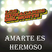 Play & Download Amarte Es Hermoso by Los Huracanes Del Norte | Napster