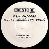 Play & Download Raw Chicago House Selection, Vol. 5 by Various Artists | Napster