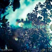 Spring Top 20 by Various Artists