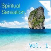 Spiritual Sensation, Vol. 1 by Various Artists