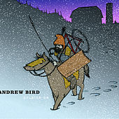 Soldier On von Andrew Bird