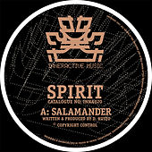 Play & Download Salamander / Holding Back by Spirit | Napster