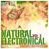 Natural Electronical, Vol. 3 (Underground Sounds for Festivals) by Various Artists