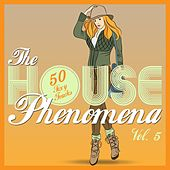The HOUSE Phenomena - 50 Sexy Tracks, Vol. 5 by Various Artists