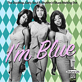 Doo Wop Soul Vol. 24 von Various Artists
