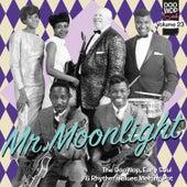 Doo Wop Soul Vol. 23 von Various Artists