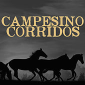 Campesino Corridos by Various Artists