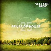 Play & Download Sense of House, Vol. 25 by Various Artists | Napster