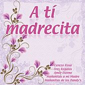 A Tí Madrecita by Various Artists