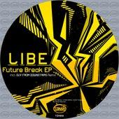 Future Break - Single by Libe