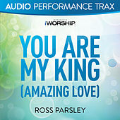 You Are My King by Ross Parsley