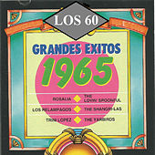 Play & Download Grandes Exitos 1965 by Various Artists | Napster