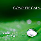 Play & Download Complete Calm: Extremely Calming & Relaxing Piano Music for Relaxation Meditation and Stress Relief by Calm Music Ensemble | Napster